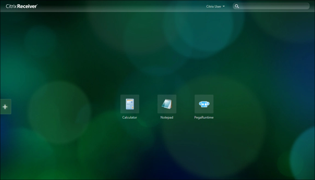 Screenshot showing the Citrix published applications.