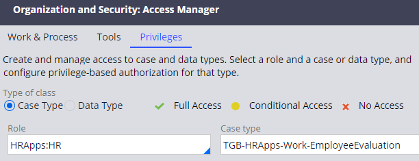 Access manager with the HR role and Employee Evaluation case type selected