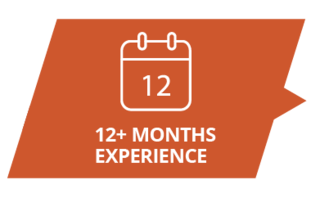 12+ months experience